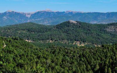 Los guías de Albacete participan en el Grupo de Trabajo impulsado por la Asociación de Guías Oficiales de Castilla-La Mancha con Puy du Fou España